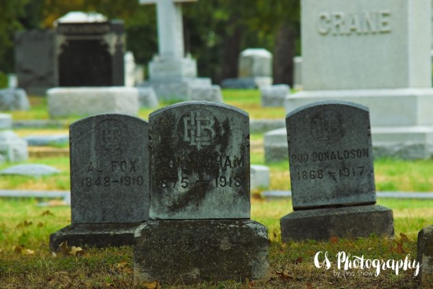 2016-08-16 Oakwood Cemetery #SYPWCemeteryArt 054