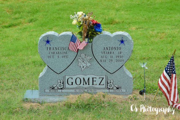 2016-08-16 Oakwood Cemetery #SYPWCemeteryArt 059-2